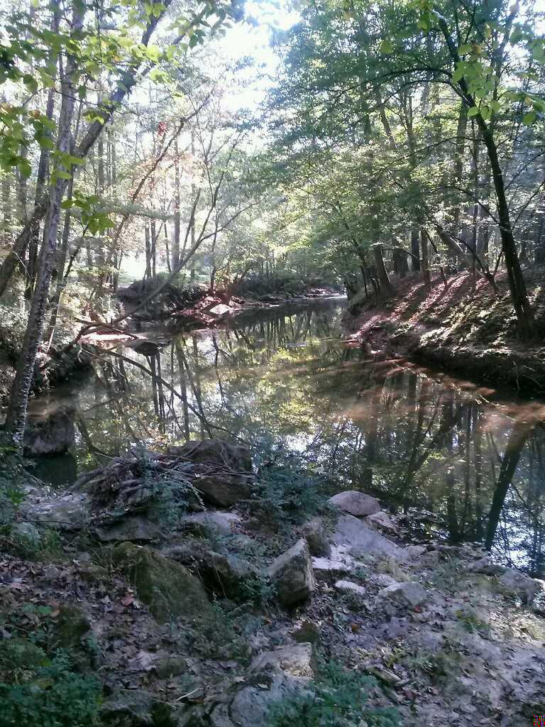 Debra-Murray-Herbert-Greene-Utoy-Creek-10.14-copy (1).jpg