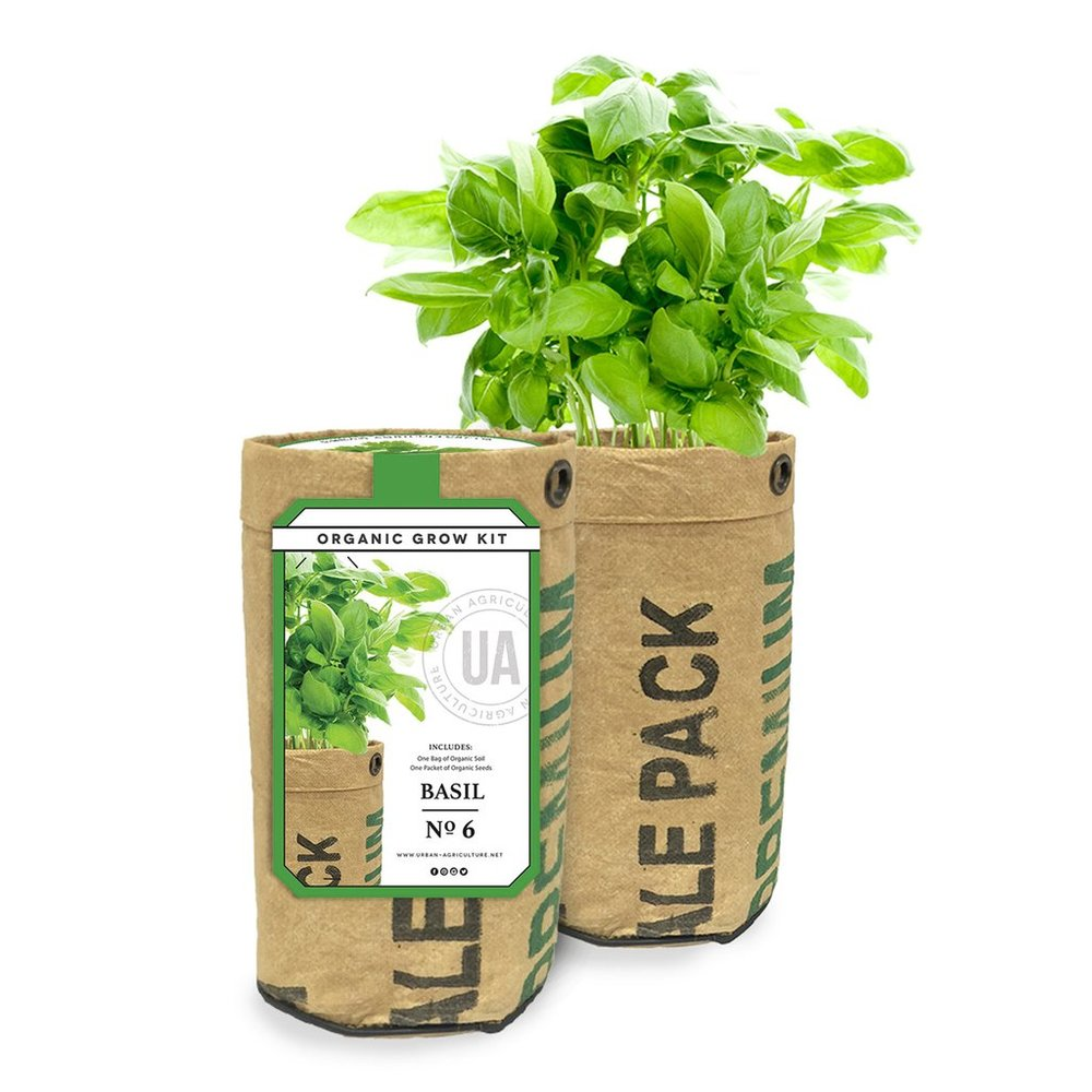 The Urban Agriculture Company - Basil Organic Growing Kit
