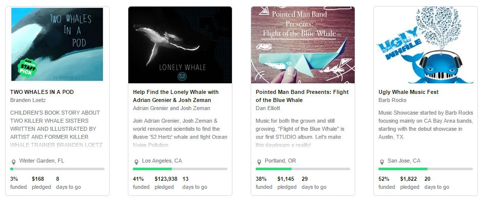 kickstarter-whales