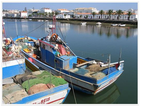 Fishing boat in Tavira. Photo by Osvaldo Gago