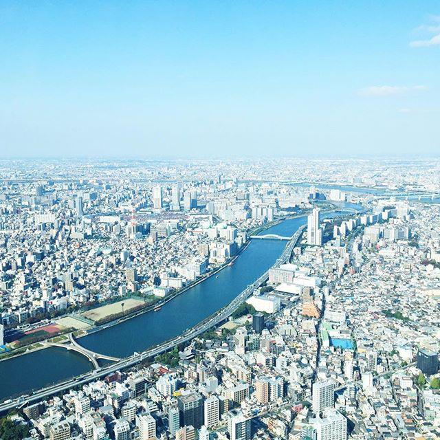 1050 ft up view of Tokyo 😍❤️ #tokyo #asakusa #japan #travel #vsco #vscocam #skytree #skytreetokyo