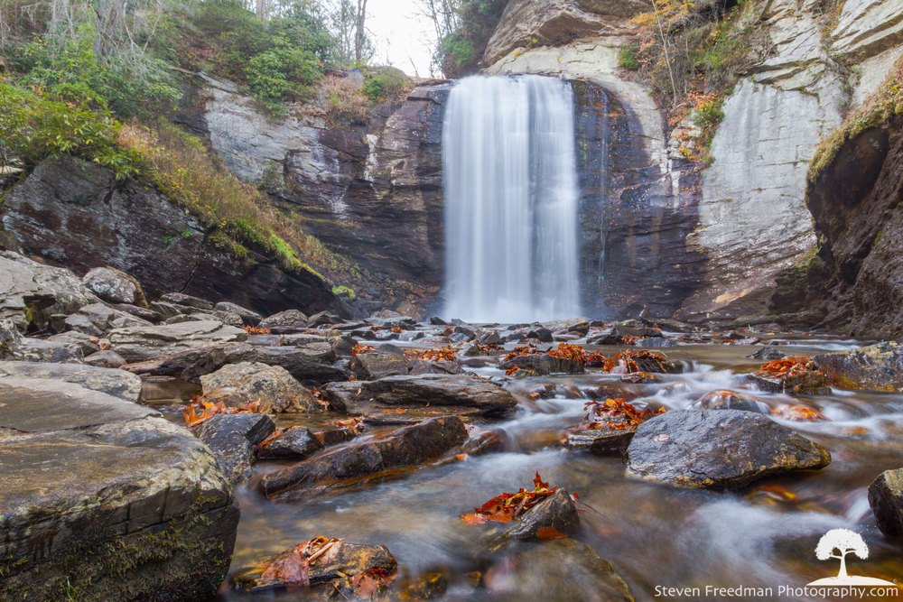 I popped into Looking Glass Falls on my way up 276 through Pisgah Forest.  Why not?