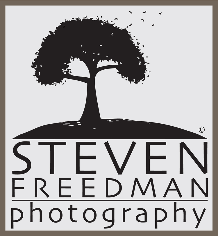 Steven Freedman Photography