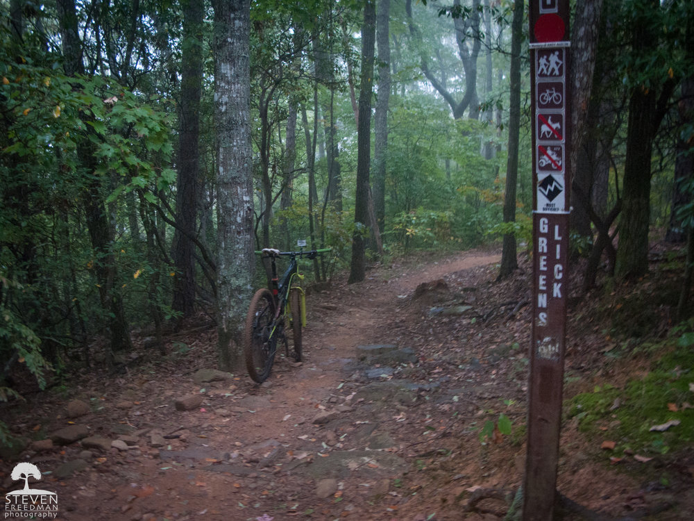 It's always a great feeling to reach the top of Greenslick in Bent Creek where two miles of downhill mountain biking bliss is earned.
