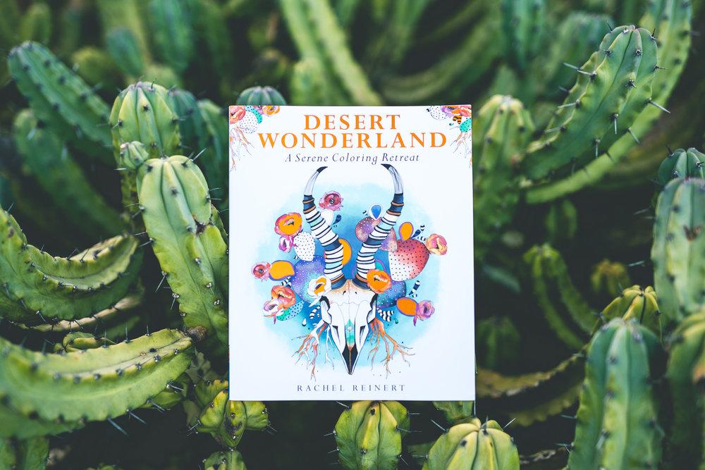 Desert Wonderland WEB.jpg