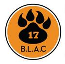 balmain_logo_new.jpg