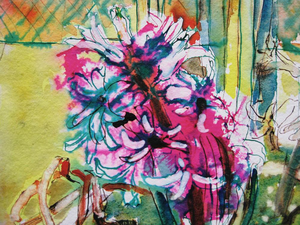 Springflowersindeepestwinter.jpg