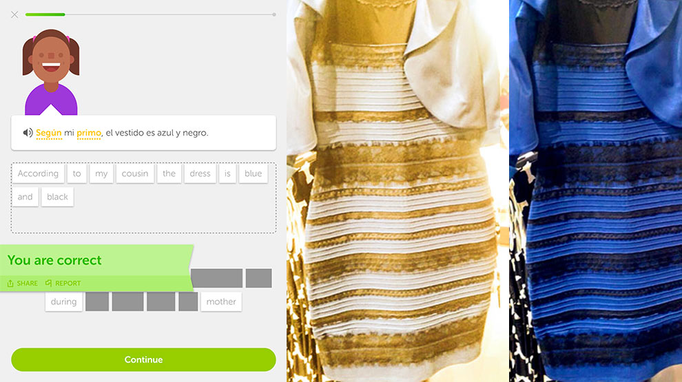 According to my cousin, the dress is blue and black.