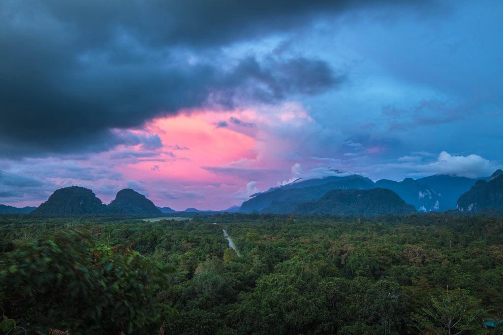 Pala Hill, Mulu, Borneo, Malaysia November 2016