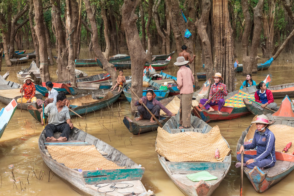 Floating Forest, Siam Reap, Cambodia, January 2017