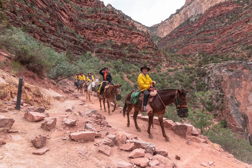 Bright Angel Trail, Grand Canyon, Arizona, May 2015