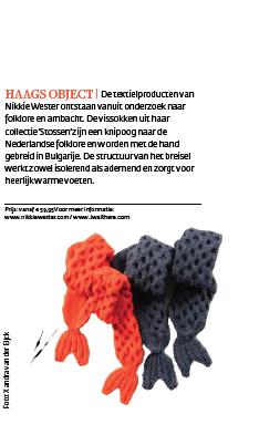 Den Haag Centraal | Haags Object