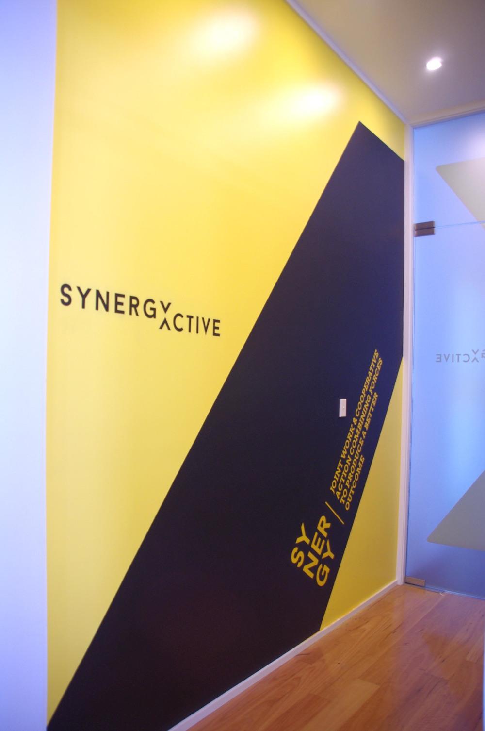 Synergy P 3.jpg