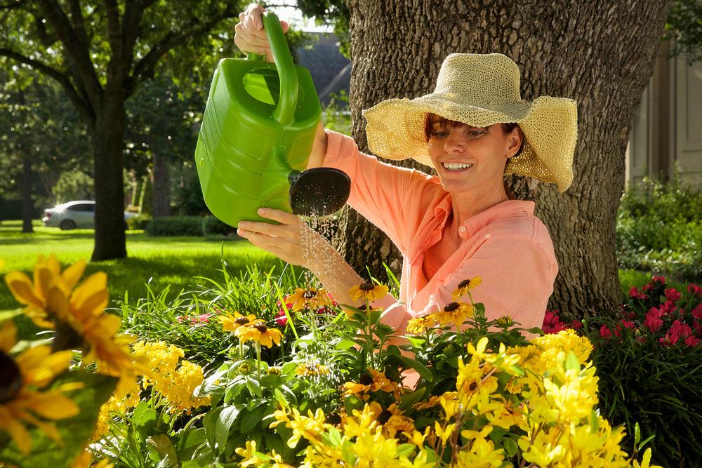 3 - Watering Flowers.jpg