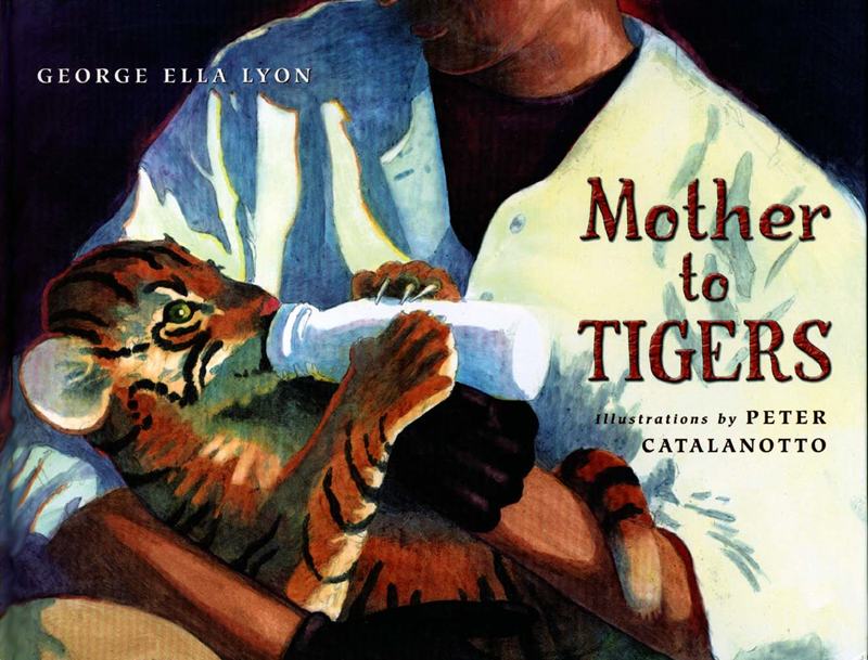 mother to tigers peter catalanotto