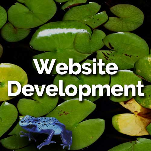 Your website should adapt to any device--whether smart phone, tablet, or laptop. We build websites that you administer yourself, simply and easily. Depending on your budget, we can begin with a core site and add higher functionality later.
