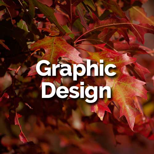 All our print and digital design is visually stunning, elegant, and modern. Our senior designer personally oversees each project, bringing to the table her wide experience as a website designer, magazine art director and illustrator.