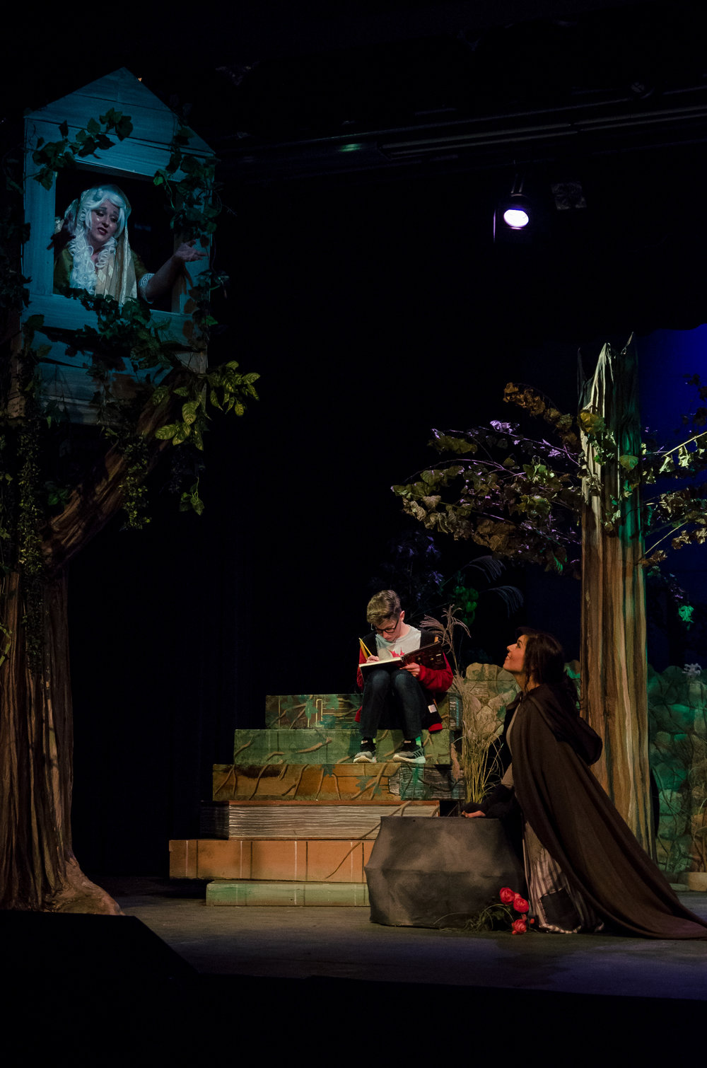 Cinderella's Mother, Into the Woods  courtesy of James Massey