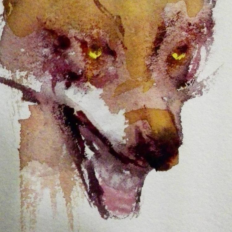 watercolourwolfweb.jpg