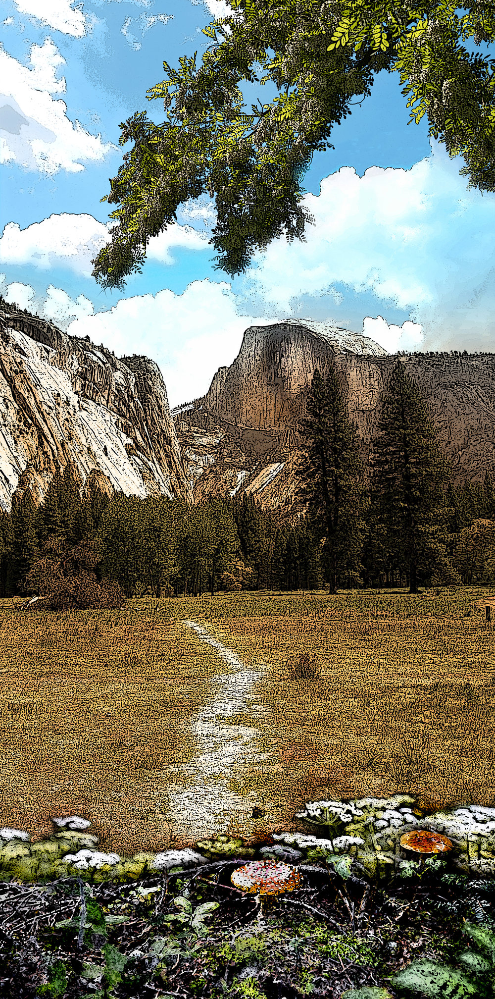 footpath to half dome