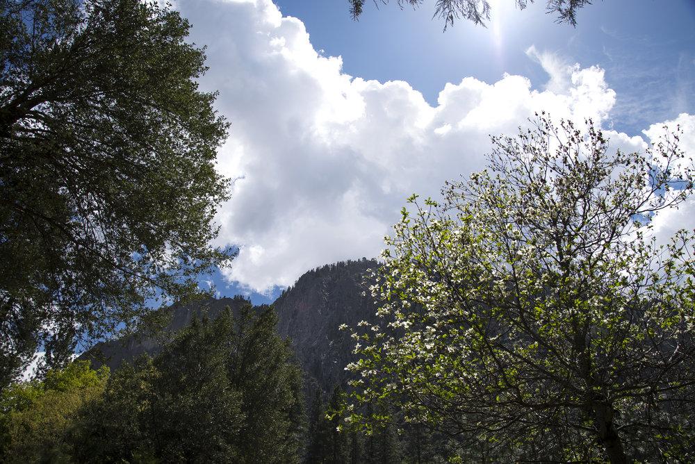 YosemiteVillage.jpg