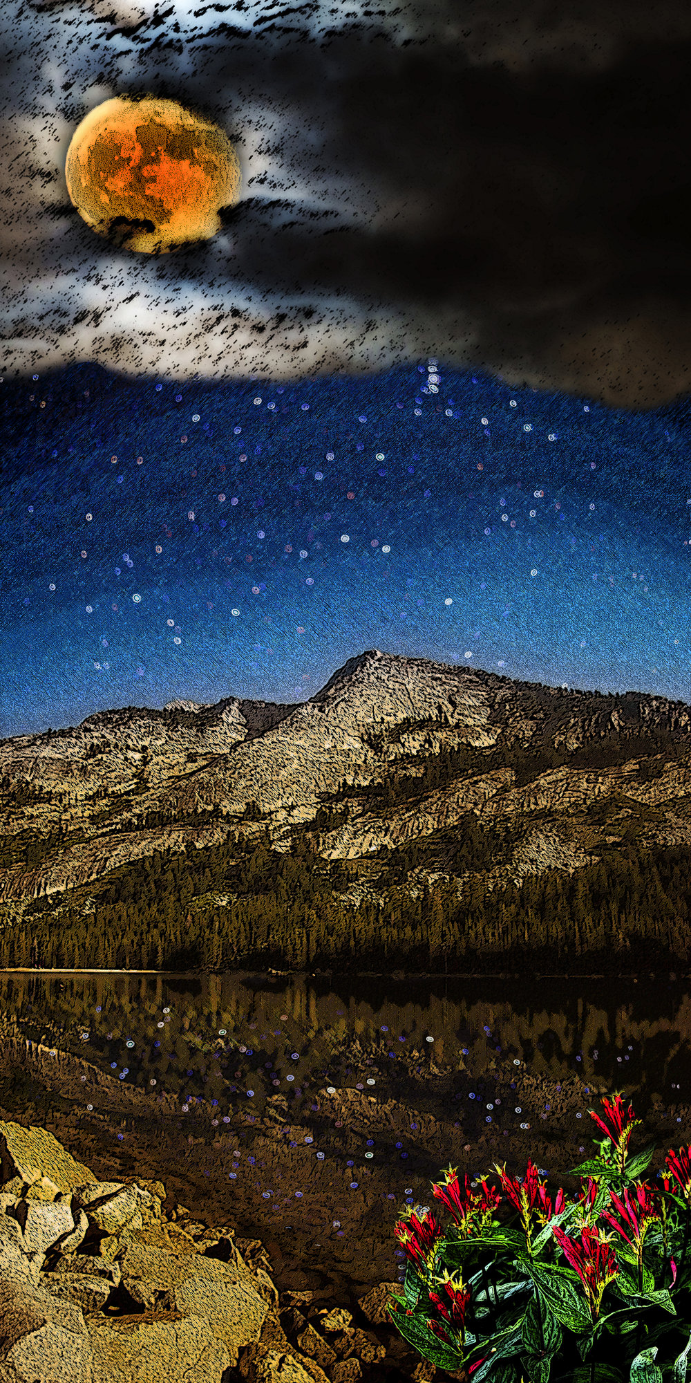 starry reflections of tenaya peak