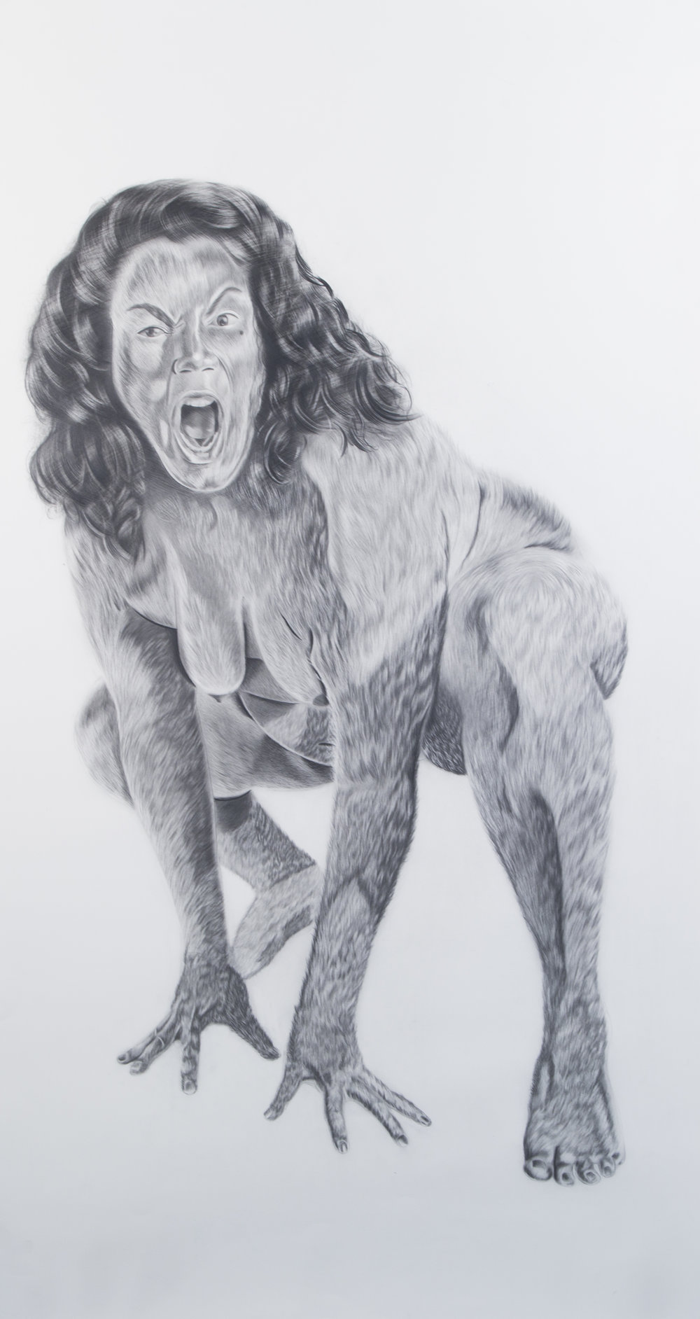 Chupacabra, 61 x 33 inches, graphite on paper, 2018