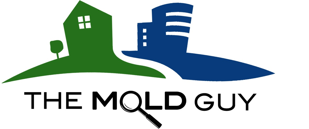 The Mold Guy