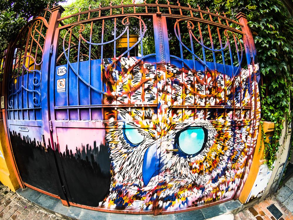 Buenos Aires Grafitti (7 of 10).jpg