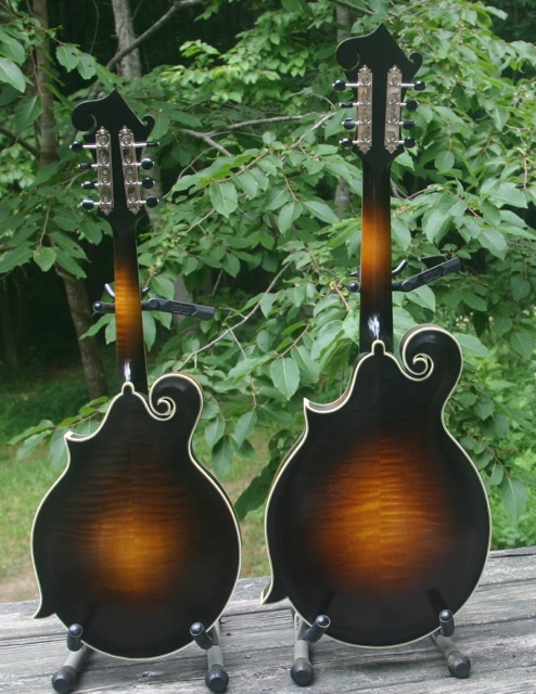 Randy Wood Mandolins back
