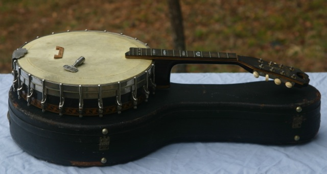 Stewart banjo-mandolin side view