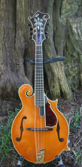 Randy Wood Mandolin Central Limited Edition