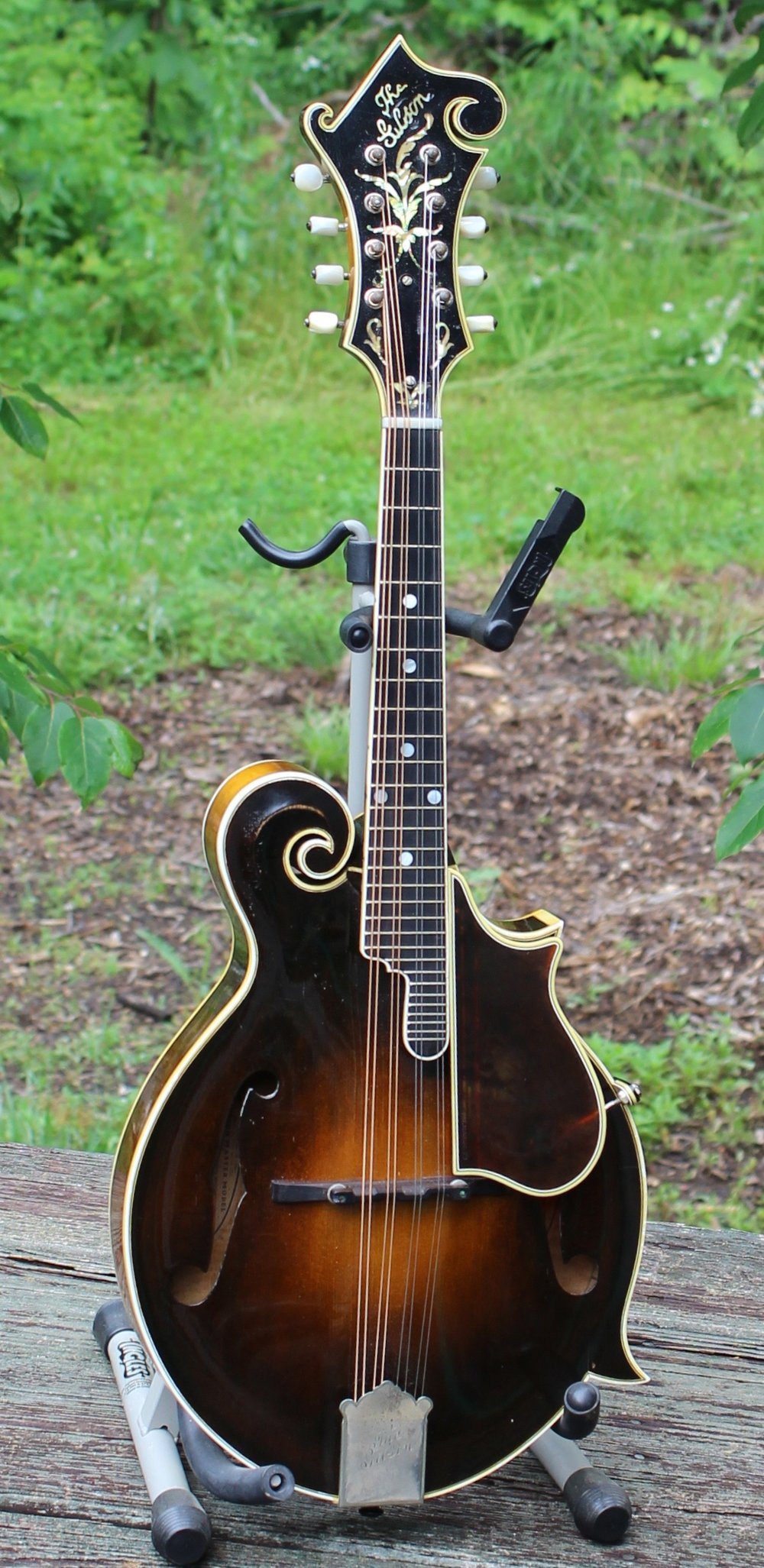 March 31, 1924 Gibson F-5 Lloyd Loar Fern
