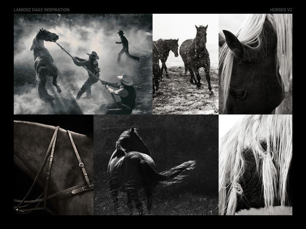horses-v2.jpg