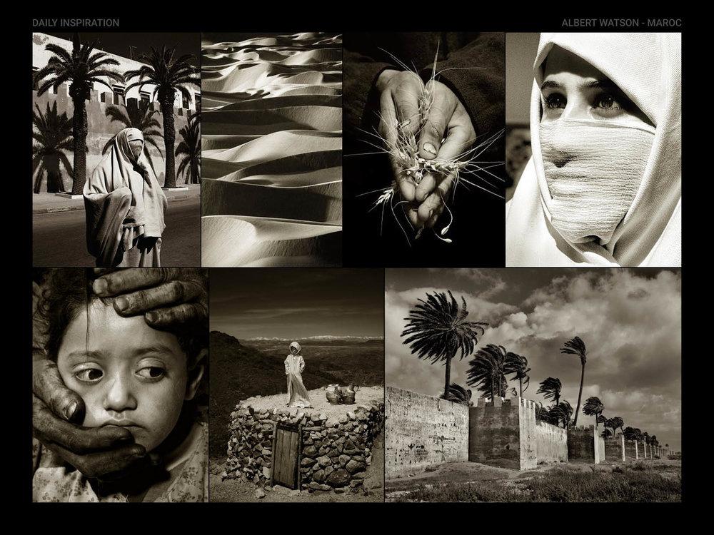 Albert-Watson-Maroc.jpg