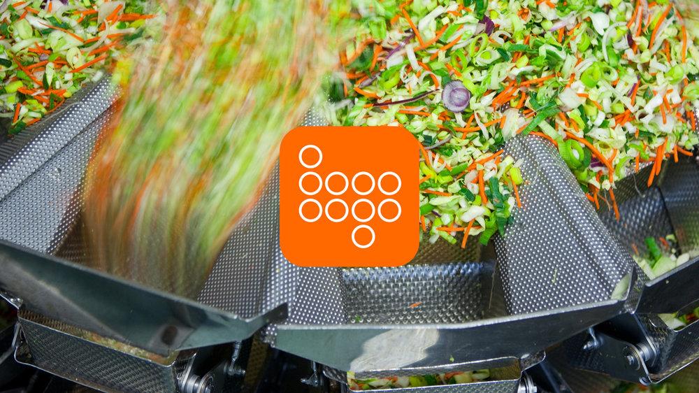 bauderer-salad.jpg