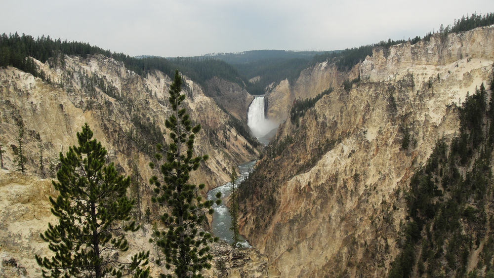 deep canyon (5 of 7).jpg