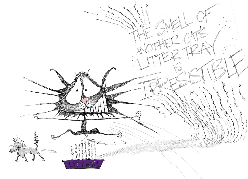 Litter tray smell_Natalie Sutton Illustration