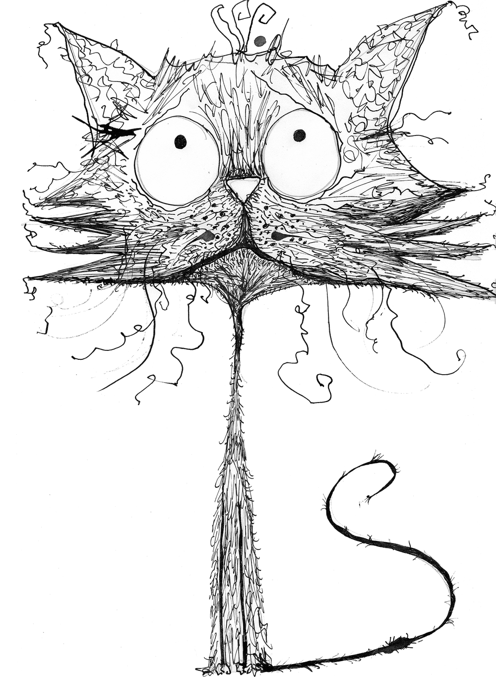 Tall Cat_Natalie Sutton illustration