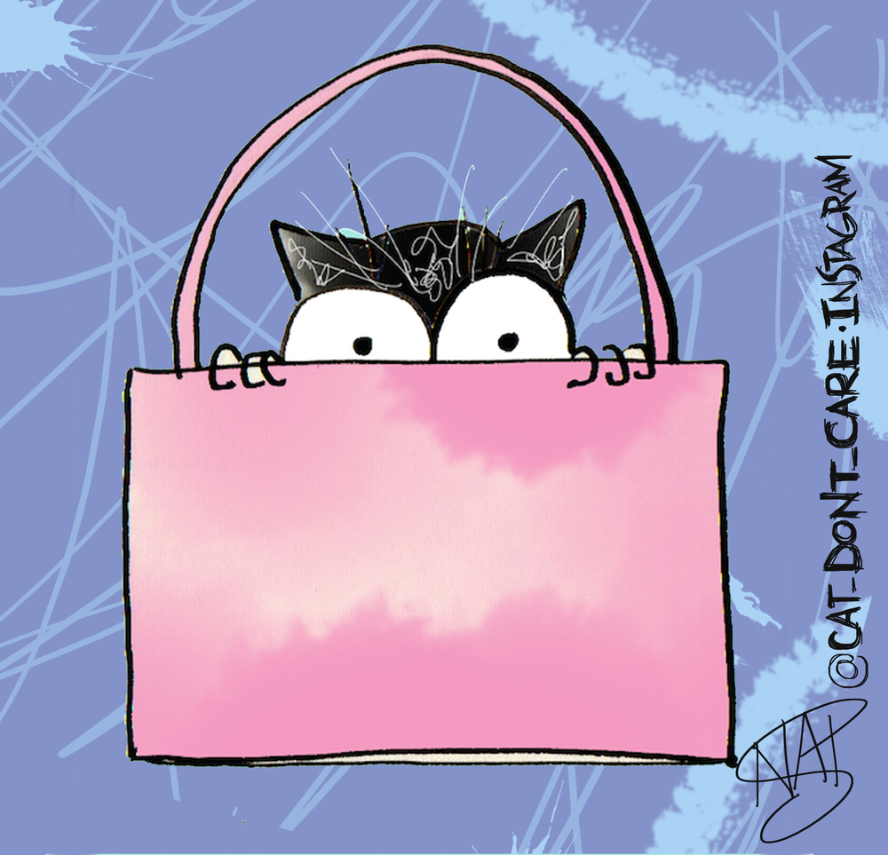 cat in pink bag.jpg