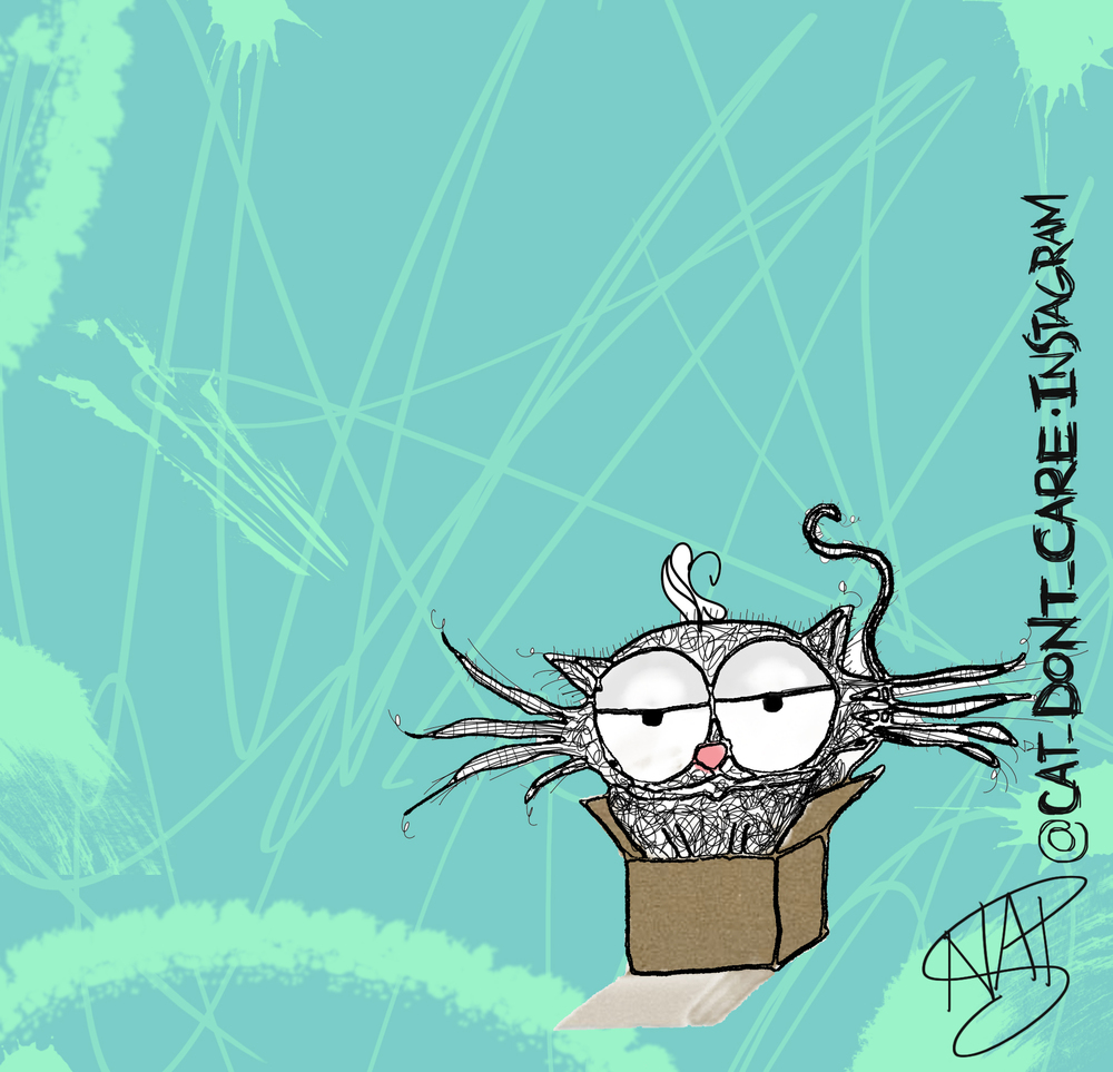 cats boxes 3 hairs scribble2c.jpg