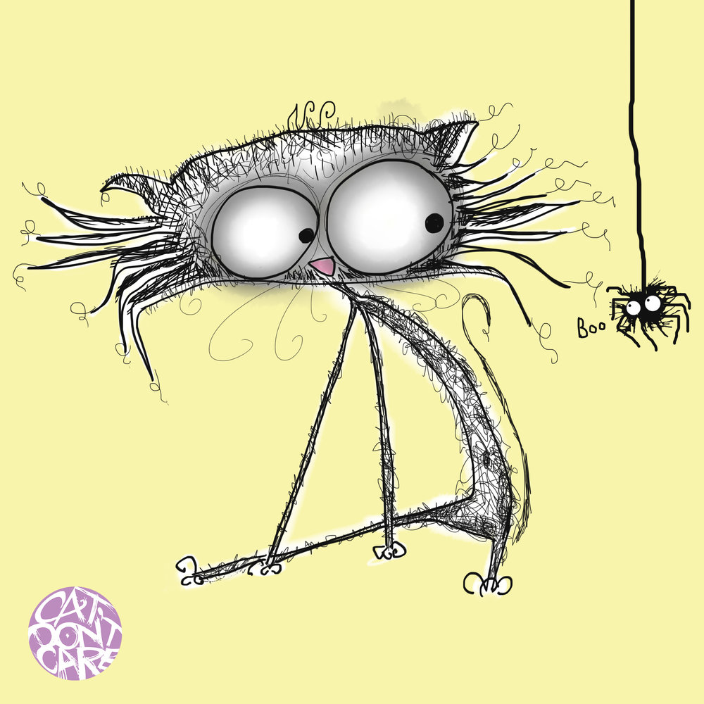 Cat and spider boo cute- crazy cat drawings-  Natalie Palmer Sutton Illustration-animation - cat dont care