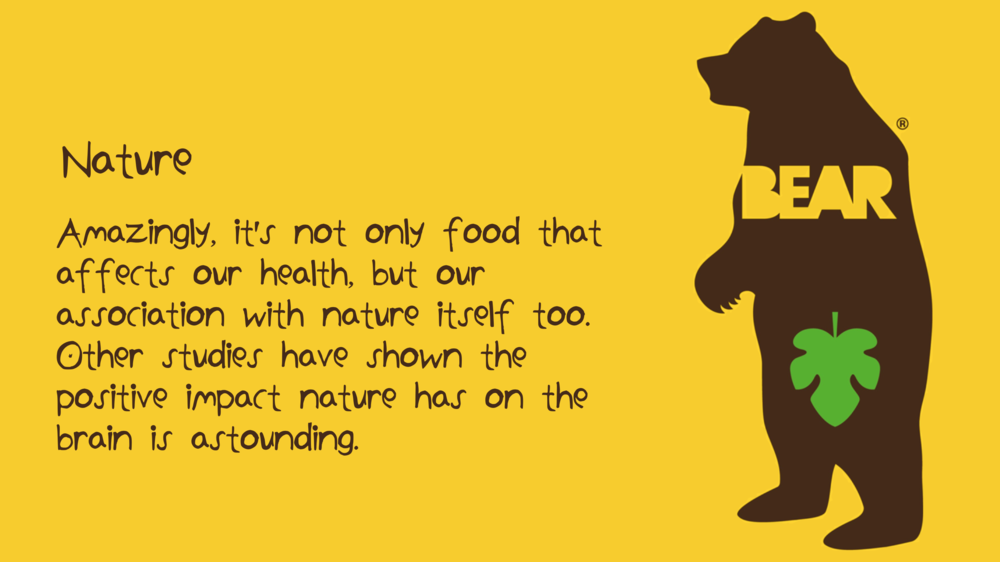 Natalie Palmer Sutton | hand illustrated ideas for Bear Nibbles 31.png