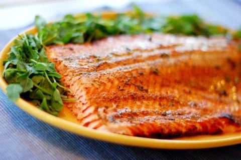salmon vibrant.JPG