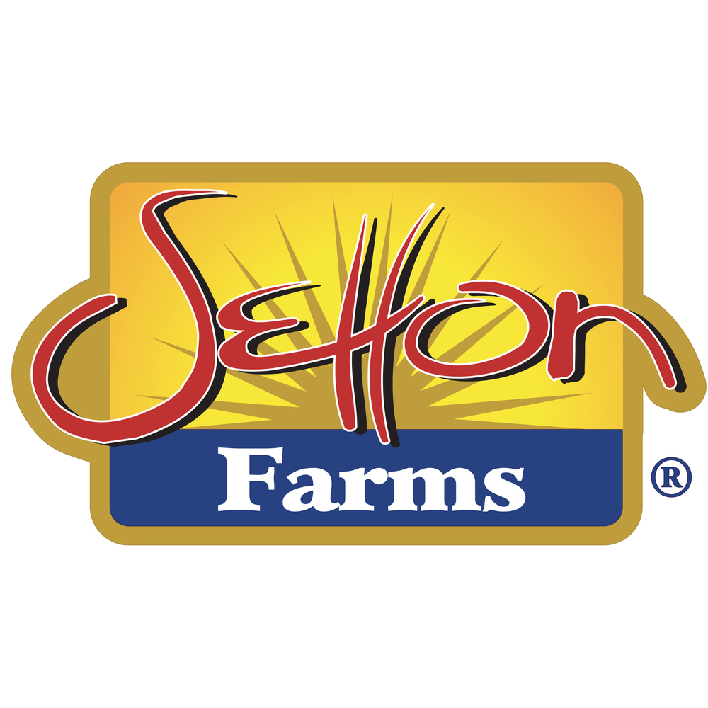 SETTON LOGO LOW RES.jpg
