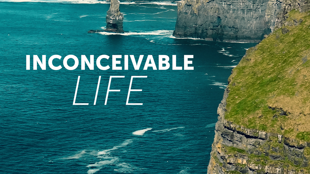 Inconceivable Life - Mike Wenig