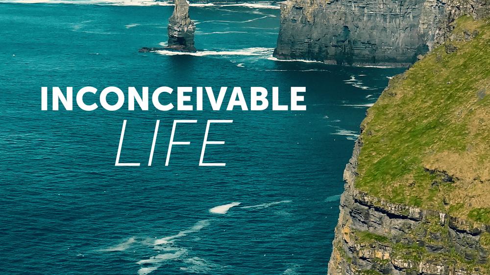 Inconceivable Life - Mike Wenig