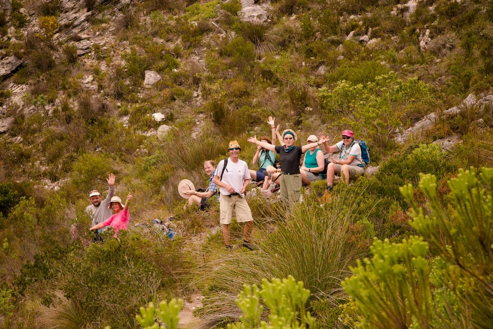 fynbos day3 (27 of 75).jpg