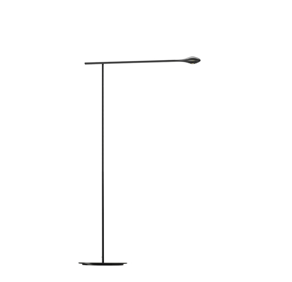 CarbonLight Floor Lamp.jpg