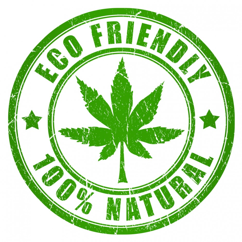 Eco Friendly & Natural | 2 for 1 Deal
